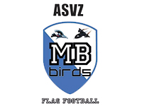 ASVZ Mockingbirds