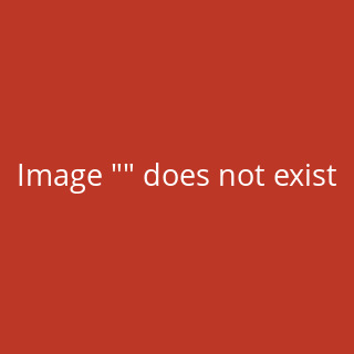 Nike Alpha Menace Pro 2 Mid American Football Rasen Schuhe - weiß/royal Gr. 10.5 US